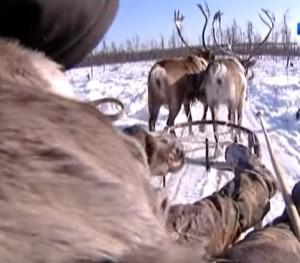 Ссылка бывает не только в Сибирь, но и на другие сайты
